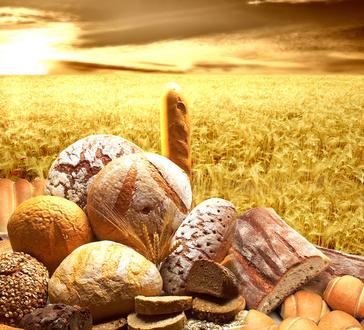 Brot Diät