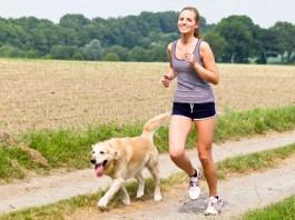 Fitness Hund